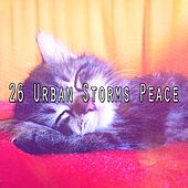 26 Urban Storms Peace by Rain Sounds and White Noise
