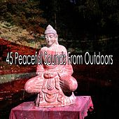 45 Peaceful Sounds from Outdoors de Meditación Música Ambiente