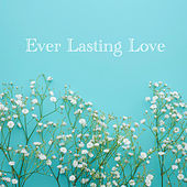Ever Lasting Love von Bluemarine U
