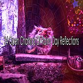 34 Open Charkras Of Rainy Day Reflections by Rain Sounds and White Noise
