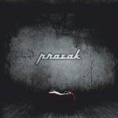 Prozak by Prozak