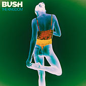The Kingdom de Bush