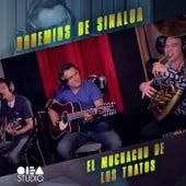 El muchacho de los tratos (Live) by Los Bohemios de Sinaloa