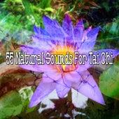 55 Natural Sounds For Tai Chi von Yoga