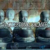 74 Exceptional Balance de Yoga Tribe