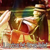 31 Anxious Pet Stress Relief by Rain Sounds and White Noise