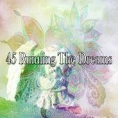 45 Running The Dreams de Sleepy Night Music