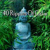 40 Ripples of Calm by Classical Study Music (1)