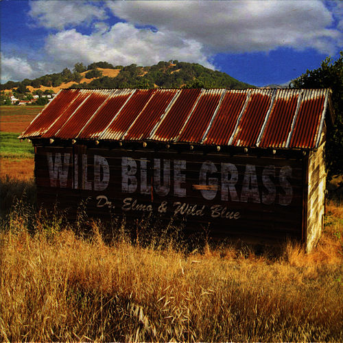 Wild Blue Grass by Dr. Elmo