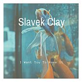 I Want You to Have It by Slavek Clay