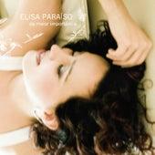 Da Maior Importância by Elisa Paraíso