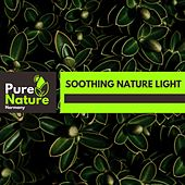 Soothing Nature Light by Nature Field Recordings