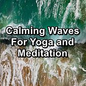 Calming Waves For Yoga and Meditation by S.P.A