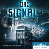 Das Signal 3 von Joshua Tree