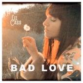 Bad Love von Liz Cass