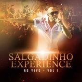 Salgadinho Experience Ao Vivo - Vol 1 de Salgadinho