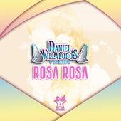 Rosa Rosa by Daniel Villalobos y Su Grupo