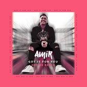 Got It for You (Optixx Remix) von Amir