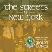 The Streets of New York by Derek Warfield