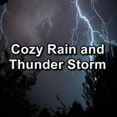 Cozy Rain and Thunder Storm by Sleep Tribe
