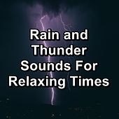 Rain and Thunder Sounds For Relaxing Times by Spa Music (1)