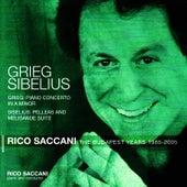 Grieg: Piano Concerto in A minor, Sibelius: Pelleas and Melisande Suite by Rico Saccani