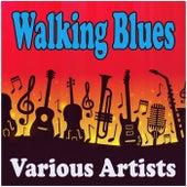 Walking Blues de Various Artists