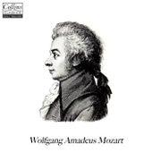 Classical Revision: Mozart, Vol. 1 de Wolfgang Amadeus Mozart