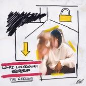 LOFI LOCKDOWN: THE RE-ISSUE by Barney Artist
