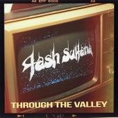 Through the Valley (The Last of Us Part II) de Tash Sultana