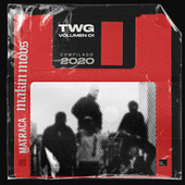 T.W.G. Vol. 01 by Various Artists