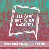 Pel Camí Que Tu Em Marques! (Live) by Coro Diocesano de Juniors M.D.