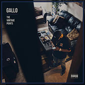 The Vantage Points by Gallo