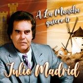A la Mancha Quiero Ir de Julio Madrid