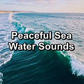 Peaceful Sea Water Sounds de Sleeping Music (1)