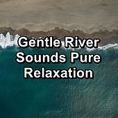 Gentle River Sounds Pure Relaxation de Relaxation And Meditation
