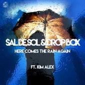 Here Comes the Rain Again by Sal De Sol