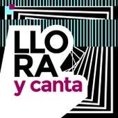 Llora y Canta von Various Artists