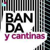 Banda y Cantinas by Various Artists