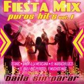 Fiesta Mix Vol. 1 di Fiesta Mix