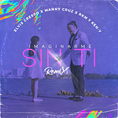 Imaginarme Sin Ti (Remix) by Elvis Crespo