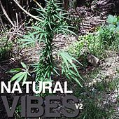 Natural Vibes Volume 2 by Various Artists