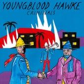 Criminals von Youngblood Hawke