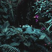 Noise de Porter
