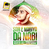 Sare Nabiyan Da Nabi Tun Imam Sohnean by Adeeb Ali Sarfaraz