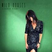 Eleanor Rigby de Wild Horses