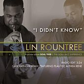 I Didn't Know [Nate Harasim Remix] (feat. Althea Rene´) - Single by Lin Rountree