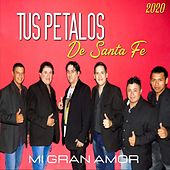 Mi Gran Amor by Tus Petalos De Santa Fe