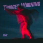 TRIGGER WARNING de Brad