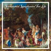 Sensational Symphonies For Life, Vol. 9 - Bach: Flute Concertos von Eckart Haupt